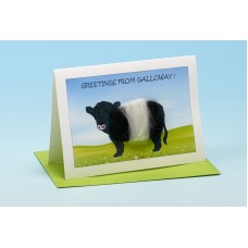 C12 Personalised Cow Card-GREETINGS FROM . . . . . . . . . .