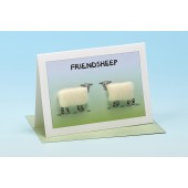 S148 Sheep Card-FRIENDSHEEP