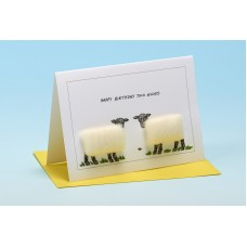 S34 Sheep Card-HAPPY BIRTHDAY TWO EWES