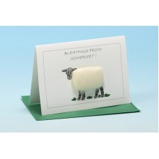 S69 Personalised Sheep Card-BLEATINGS FROM . . . . . . . . . .