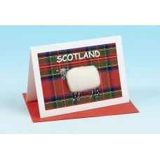 SC34 Scottish Card-TARTAN SHEEP