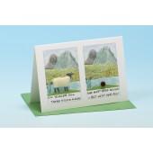 Y3 Sheep Card-LITTLE POEM