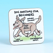 5276 Coaster-DOG ANATOMY