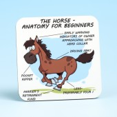 5217 Coaster-HORSE ANATOMY
