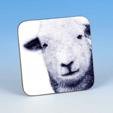 8202 Coaster-MARK CHARLES-SHEEP