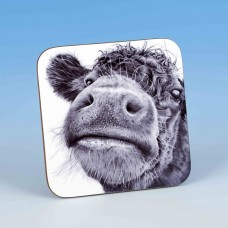 8203 Coaster-MARK CHARLES-COW