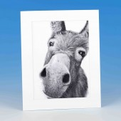 8404 Mounted Print-MARK CHARLES-DONKEY