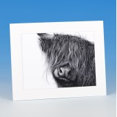 8405 Mounted Print-MARK CHARLES-HIGHLAND COW