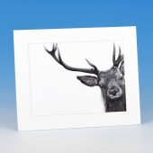 8406 Mounted Print-MARK CHARLES-DEER