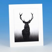 8407 Mounted Print-MARK CHARLES-STAG