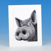 8410 Mounted Print-MARK CHARLES-PIG