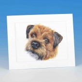 8412 Mounted Print-MARK CHARLES-COLOURED BORDER TERRIER