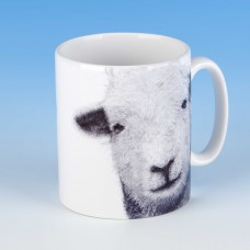 8102 Mug-MARK CHARLES-SHEEP