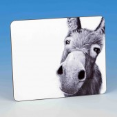 8304 Placemat-MARK CHARLES-DONKEY