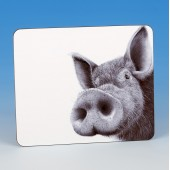 8310 Placemat-MARK CHARLES-PIG