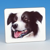 8311 Placemat-MARK CHARLES-COLOURED COLLIE