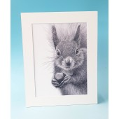 8420 Mounted Print-MARK CHARLES-SQUIRREL