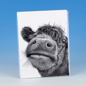 8503 Unmounted Print-MARK CHARLES-COW
