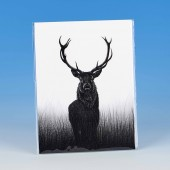 8507 Unmounted Print-MARK CHARLES-STAG