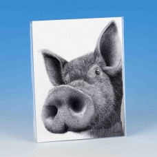 8510 Unmounted Print-MARK CHARLES-PIG