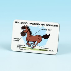 6149 Fridge Magnet-HORSE ANATOMY