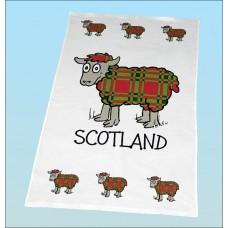 T25 Tea Towel-TARTAN SHEEP